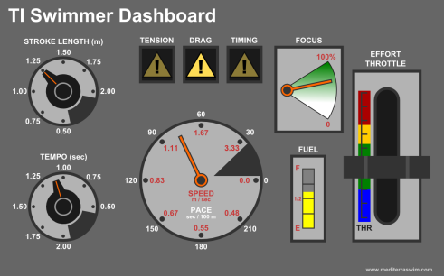 TI Swimmer Dashboard