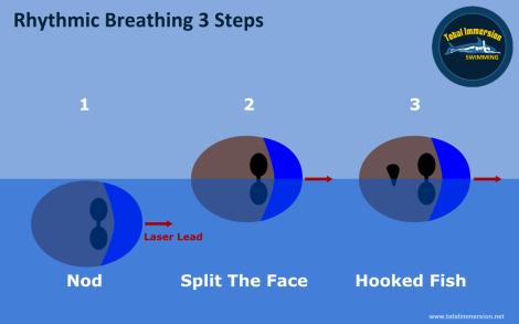 Workshop - 3 Step Breathing