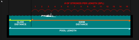 Metrics 101 Stroke Length Smooth Strokes